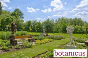Bylinková zahrada v Botanicusu