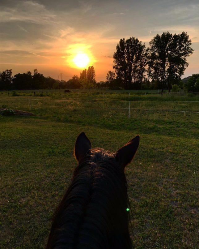 s.venhudova (Silvie Venhudová) Sunset with my baby boy ❤️ #my #oneandonly #babyboy #lovehimtothemoonandback #milliontimes #horseofalifetime #love